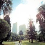 Walking through the Royal Botanic Garden